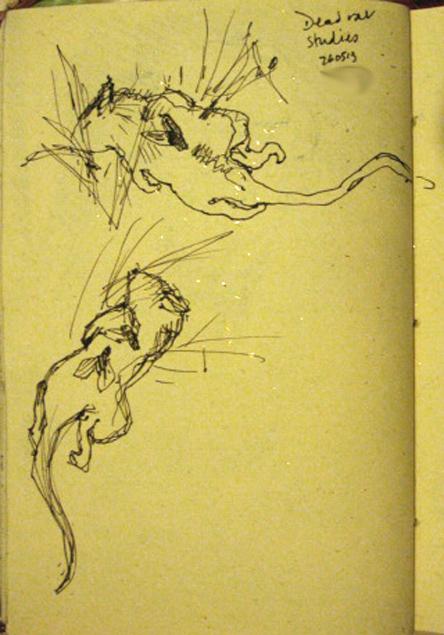 26 rats