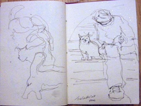 09 castle cat