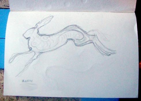 15 hare 1