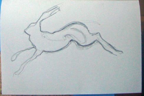 15 hare 3