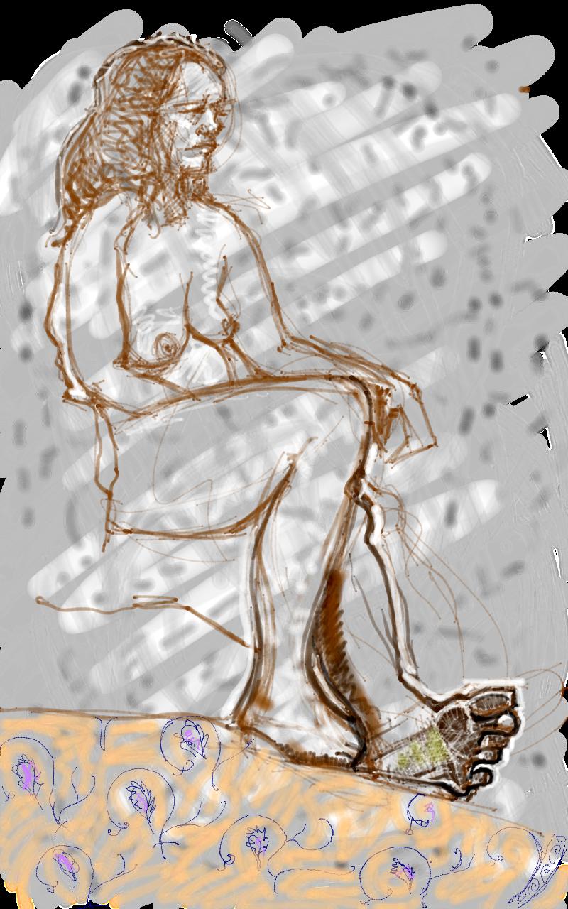 Human Anatomy Scribblah
