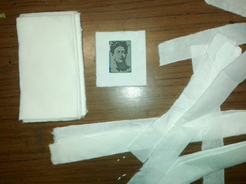 frida paper
