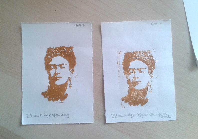 19 Frida cartridge