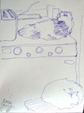 boiler cats
