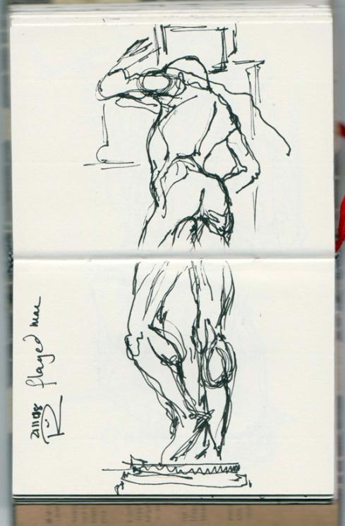 anatomy b