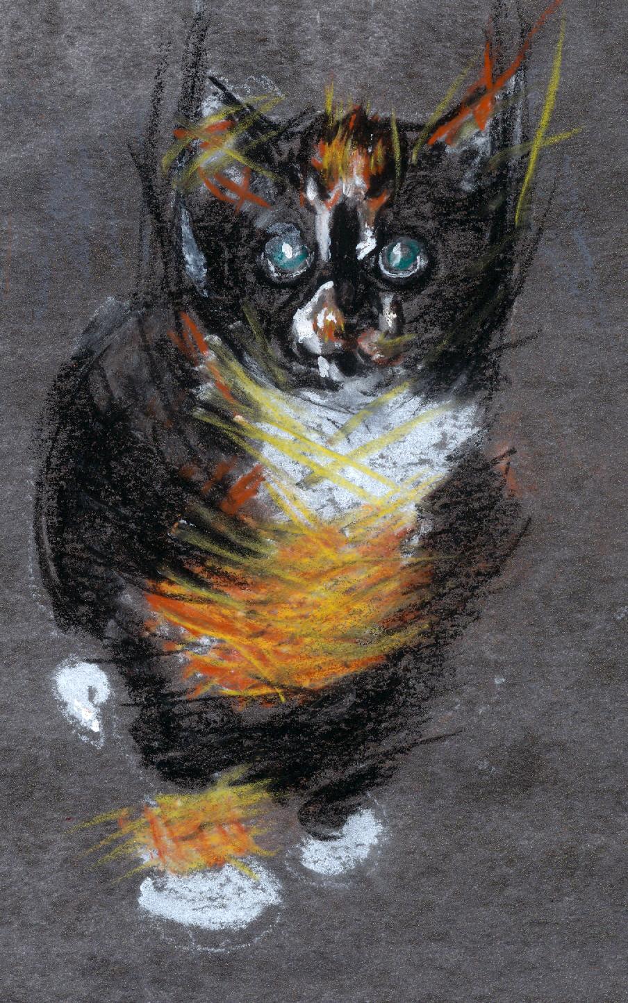 16 third kitten of the apocalypse