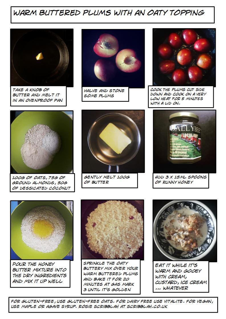 oaty plums