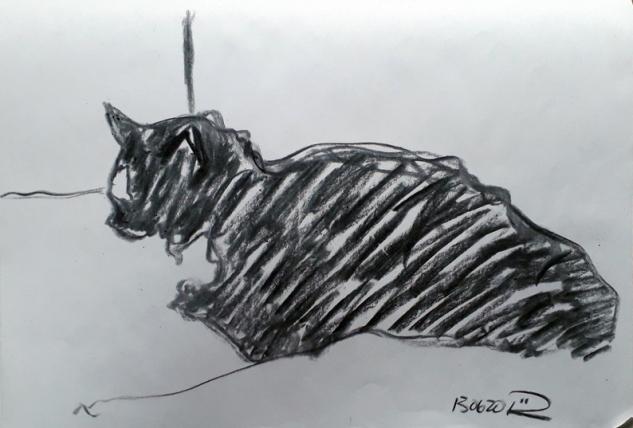 charcoal cat